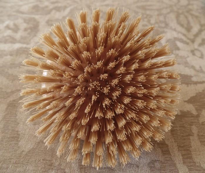 cellulite brush