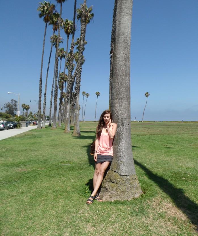 me palm trees