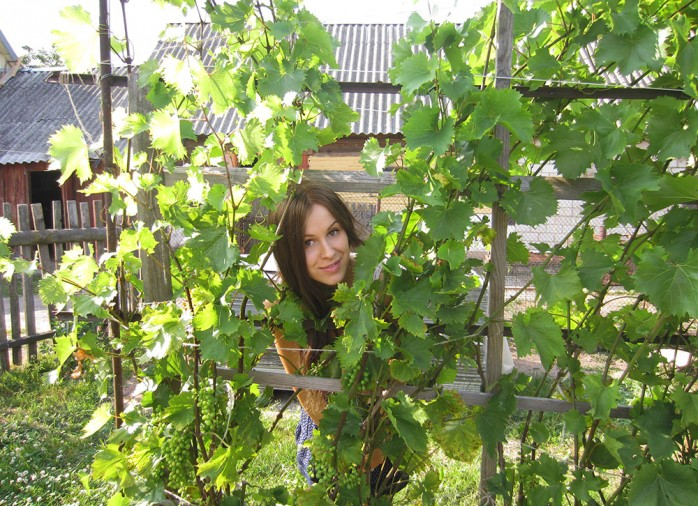 me grape tree
