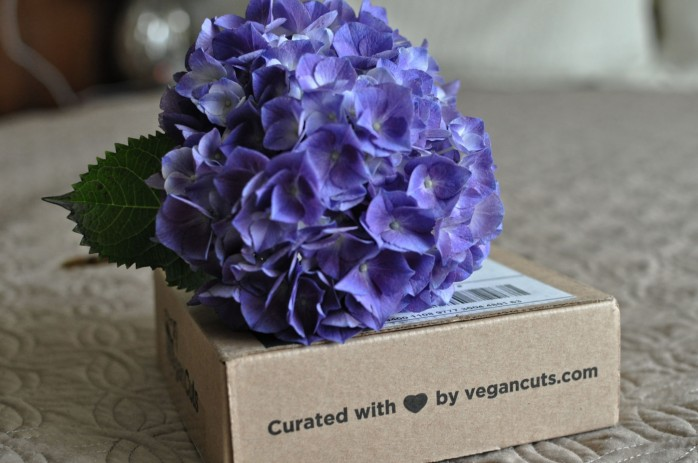 Vegan Cuts June Box 4