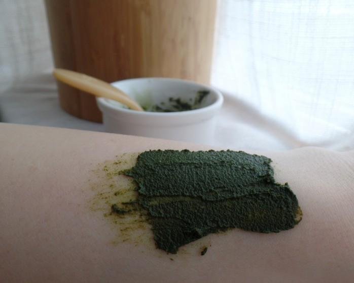 Moringa Powder 3